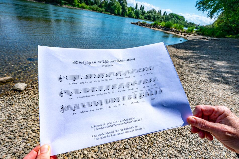 Donaulied-Petition: Initiatorin wird mit Mord und Vergewaltigung bedroht