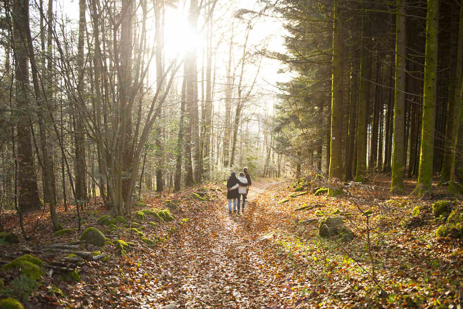Spaziergänge mit der Familie sind weiterhin erlaubt - Sonne und frische Luft tun Körper und Seele gut. (Symbolfoto)