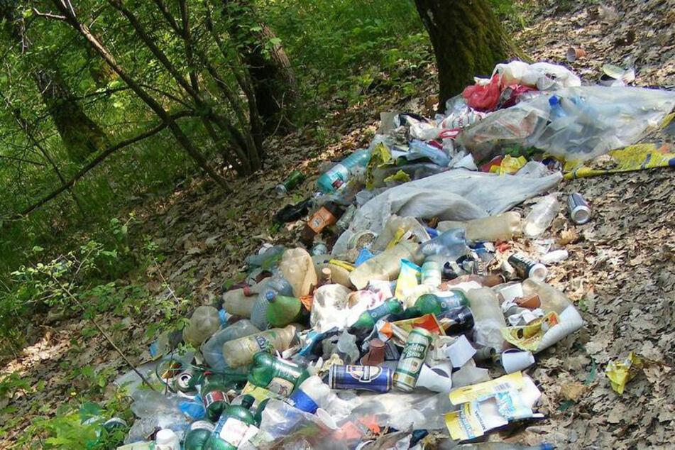 Neben jeder Menge Müll, befand sich auch Kleidung und einige Elektrogeräte unter den Sachen.