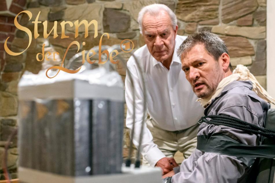 Sturm der Liebe: Kann Werner Christoph rechtzeitig retten?