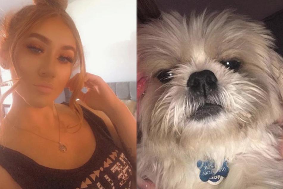 Hund wird bald an Krebs sterben: So herzergreifend reagiert sein Frauchen