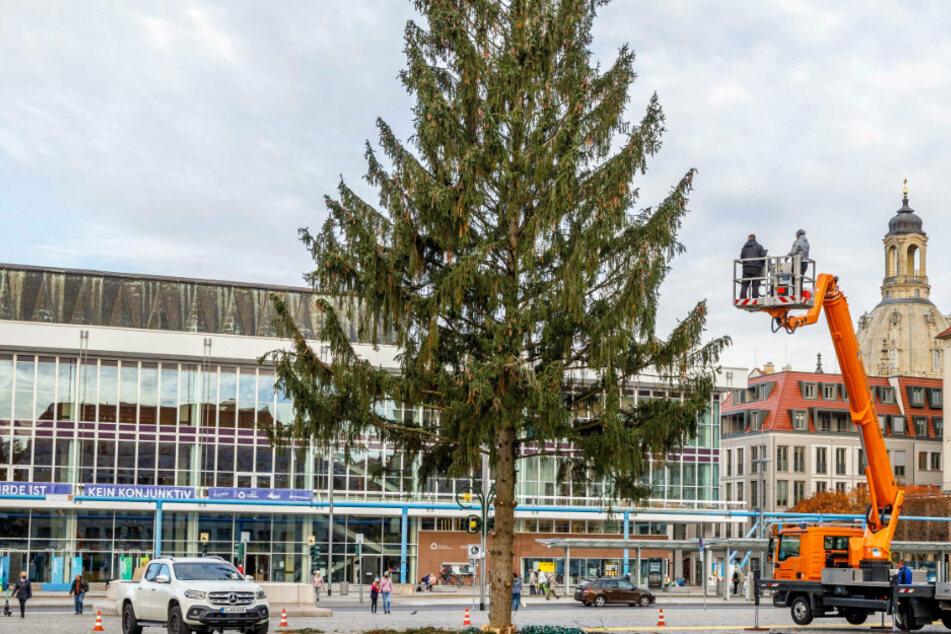 Striezelmarkt startet nicht vor dem zweiten Advent, doch die Stadt baut schonmal auf!