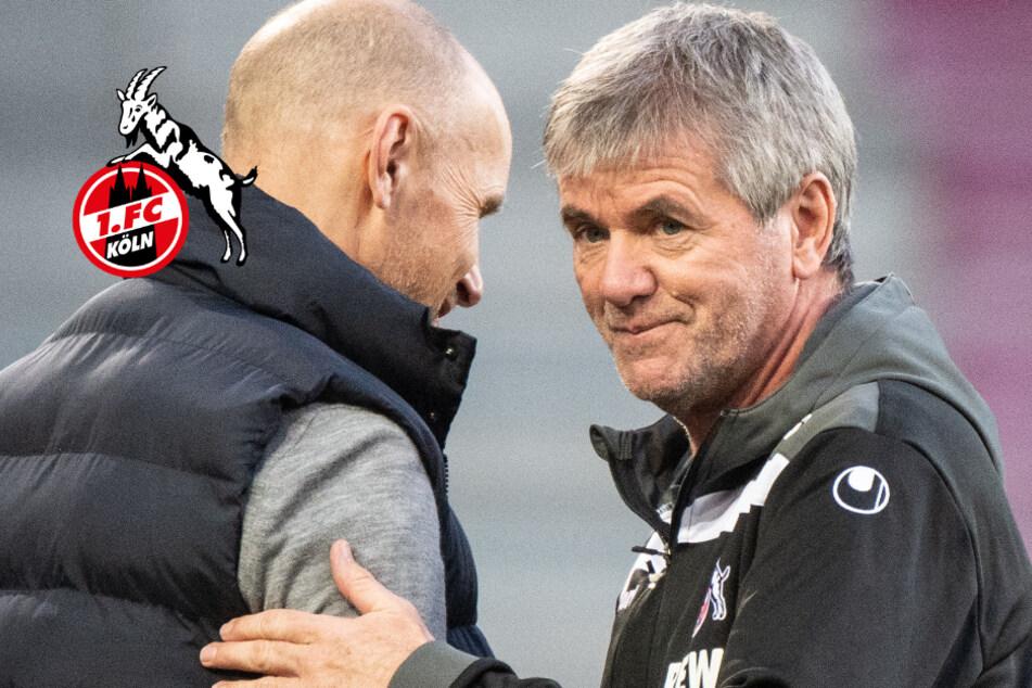 """Köln-Coach Funkel über hohe Trainer-Ablösen: """"Das ist der Wahnsinn!"""""""