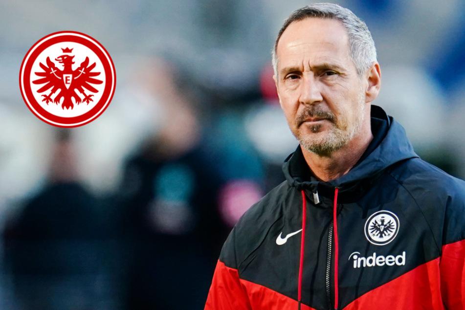 """Eintracht-Trainer Hütter: Hätte Max Kruse """"gerne bei uns gesehen"""""""