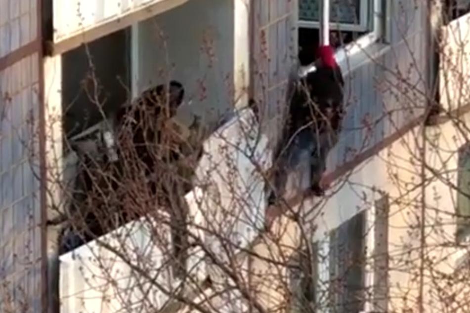 Gegen den Macheten-Mann (rote Mütze) wurde nun der Vollzug der Untersuchungshaft angeordnet.