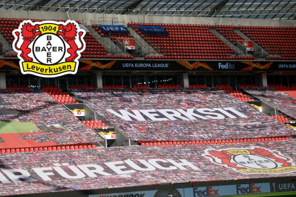Leverkusen legt Stadion-Konzept für knapp 10.000 Zuschauer vor