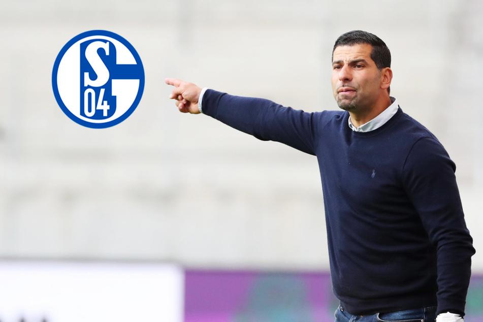Fix: FC Schalke 04 holt Dimitrios Grammozis als neuen Trainer!