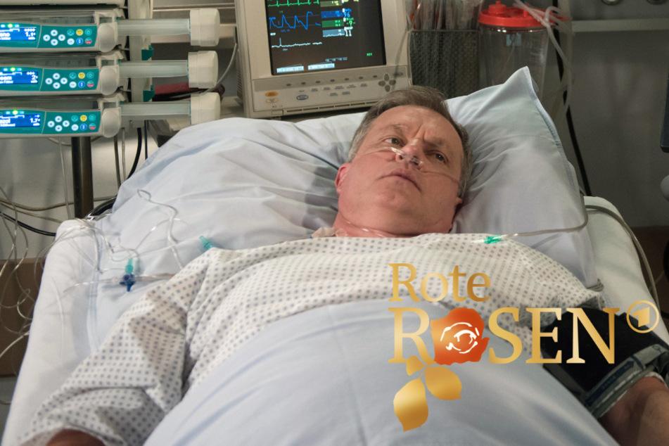 Rote Rosen: Nach seiner Verlobung mit Amelie stirbt Torben im Krankenhaus.