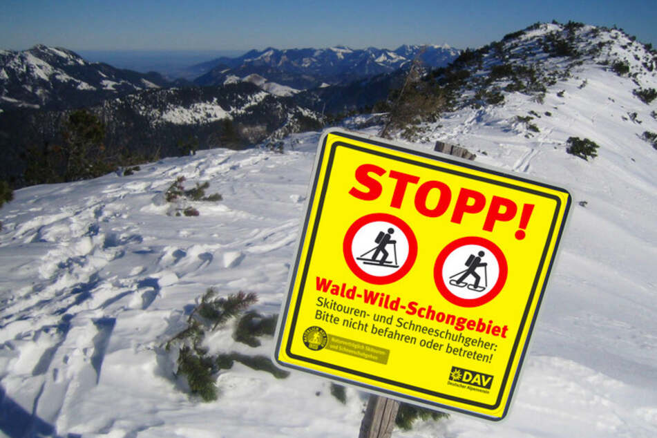 """Ein Schild mit der Aufschrift """"Stopp - Wald-, Wild Schutzgebiet"""" steht auf der Benzingspitze oberhalb des Spitzingsees."""