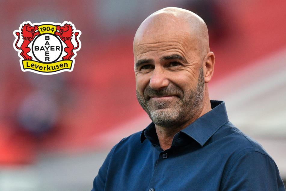 Leverkusen-Trainer Bosz dankt FC Bayern für Champions-League-Sieg