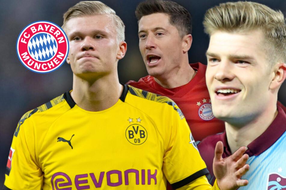 Schnappt sich der FC Bayern seinen eigenen Haaland? 1,95-Meter-Hüne offenbar im Visier