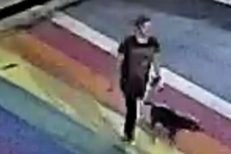 Frau (†40) und Hund erstochen! Sie hatten nur einen Spaziergang gemacht