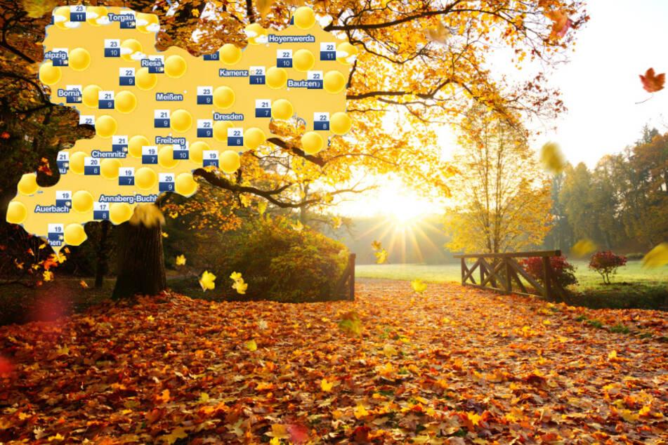 Sommerlicher Herbst in Sachsen: Jetzt wird es richtig warm!