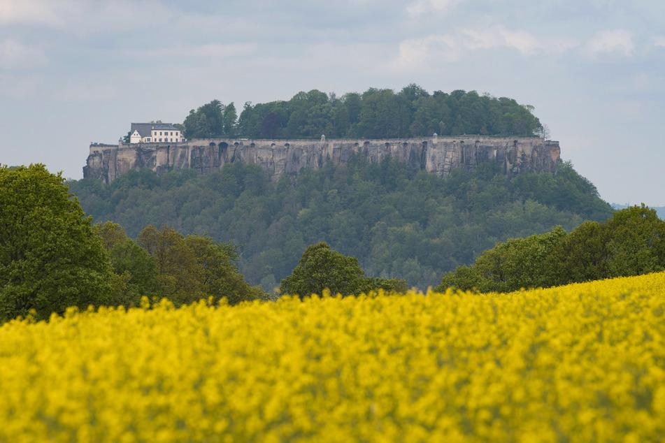 Auch der Festung Königstein in der Sächsischen Schweiz fehlen aufgrund der Corona-Pandemie wichtige Besuchergruppen.