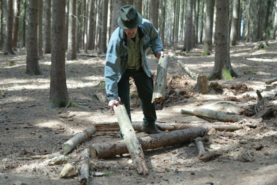 Die Hindernisstrecken führen quer durch den Wald. Dafür wurden auch Stämme zersägt und der Boden aufgegraben.
