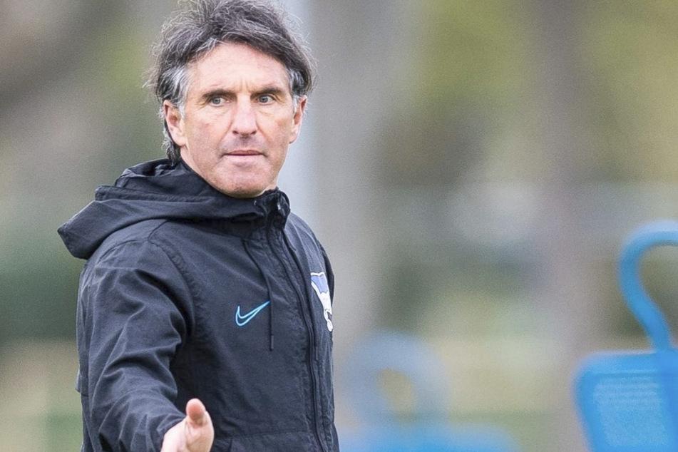 Hertha-Trainer Bruno Labbadia (54). (Archivbild)