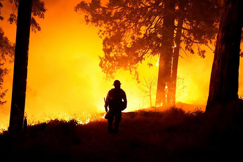 Mehr als 20 größere Brände dämmten Feuerwehrleute im September in Kalifornien ein.