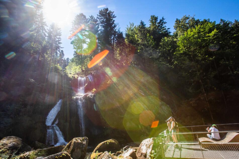 Mit einer Gesamtfallhöhe von 163 Metern sind die Triberger Wasserfälle die höchsten in Baden-Württemberg, damit gehören sie auch zu den höchsten Wasserfällen in Deutschland.