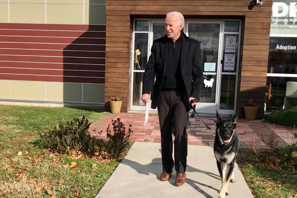Nach Attacke im Weißen Haus: Bidens Hunde sind zurück!