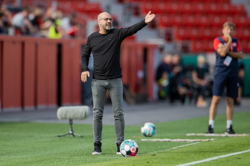Leverkusens Trainer Peter Bosz (56) gestikuliert im Pokal-Spiel gegen Eintracht Norderstedt (1:1) wild an der Seitenlinie.
