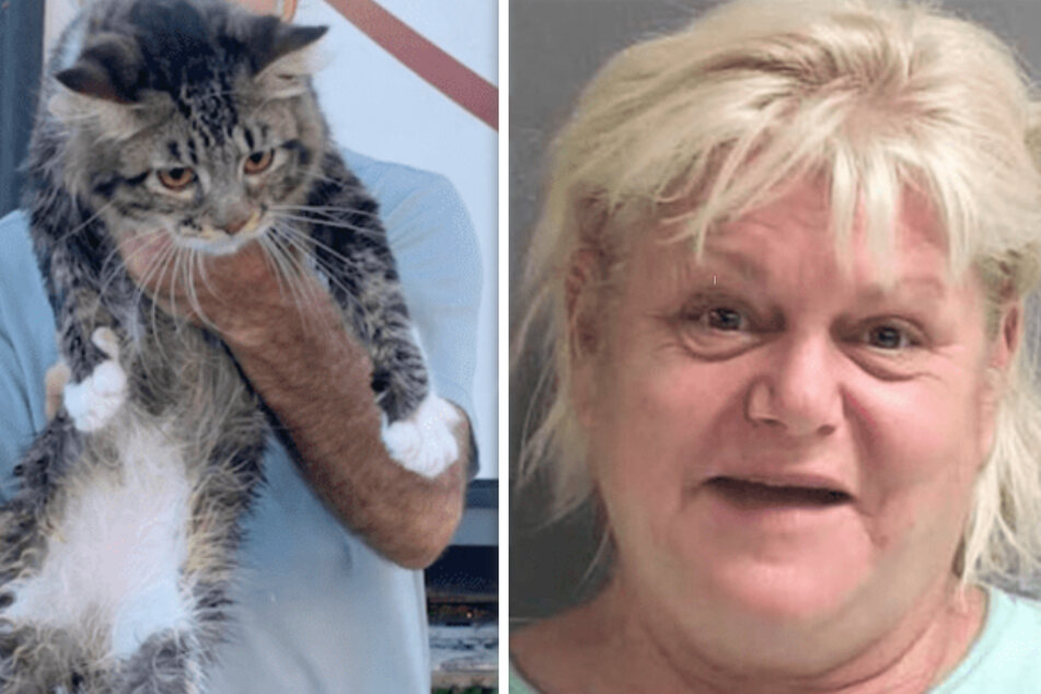 Florida woman arrested after threatening to kill her ex and chucking his cat into a river
