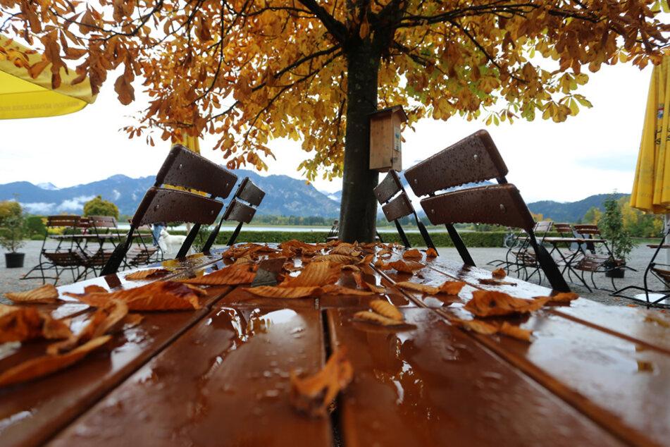 Der Herbst zeigt sich im vollen Umfang - leider auch, was das Regenwetter betrifft. (Archiv)