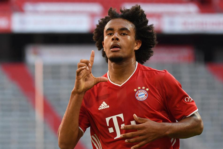 Joshua Zirkzee steht nicht mehr im Champions-League-Aufgebot des FC Bayern München. (Archivbild)