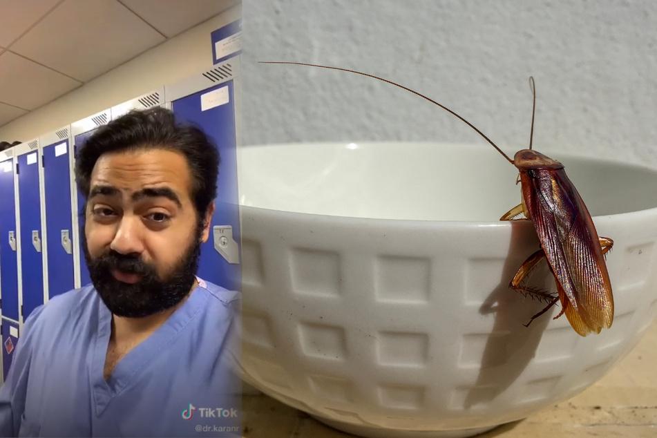 Kakerlaken im Kaffee!? Auf seinem TikTok-Kanal erklärt Dr. Karan Raj regelmäßig erstaunliche und kuriose Fakten.