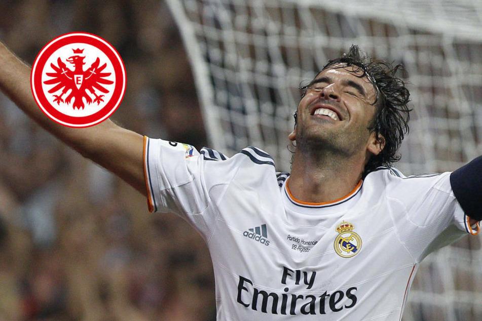 Trainer-Hammer für Eintracht Frankfurt! Kommt Legende Raúl an den Main?
