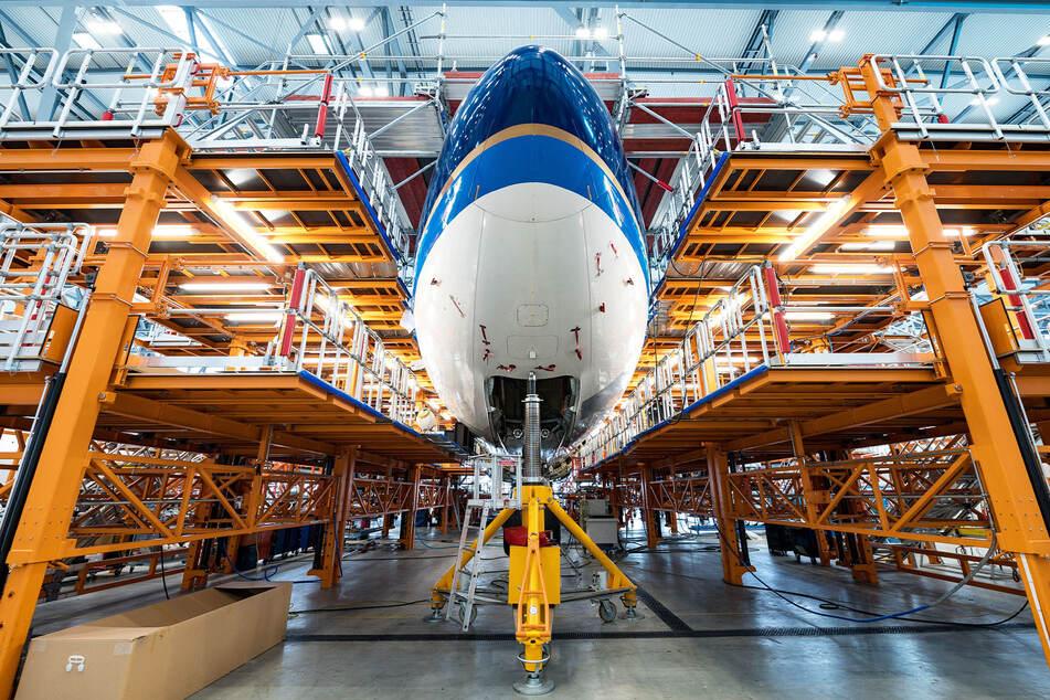 Schon ein gigantischer Vogel: Die Elbe Flugzeugwerke Dresden (EFW) wollen die Umrüstung von Maschinen des Typs A330 bis Ende übernächsten Jahres auf das Dreifache hochfahren.