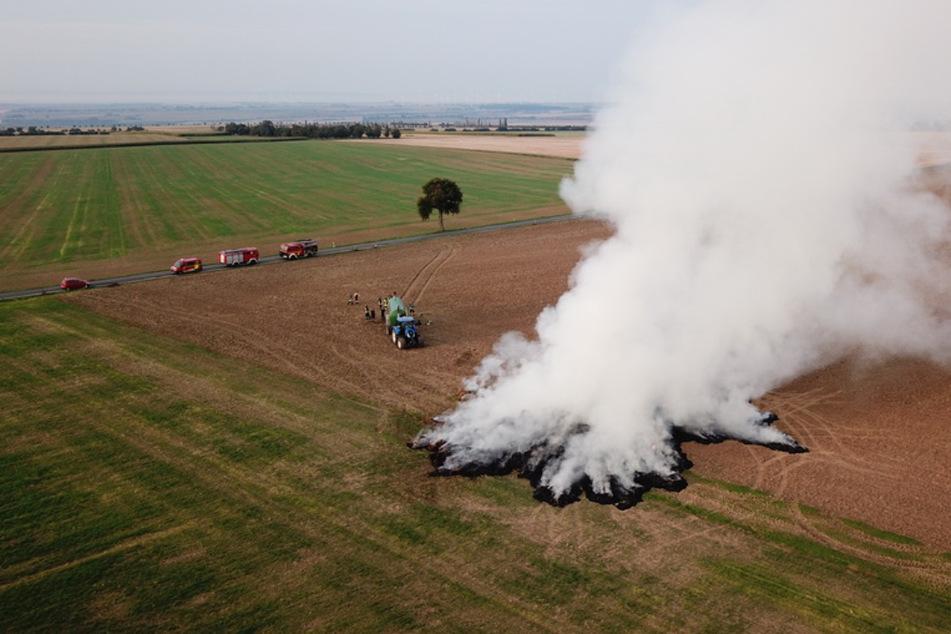 Strohballen gehen in Flammen auf: Polizei vermutet Brandstiftung