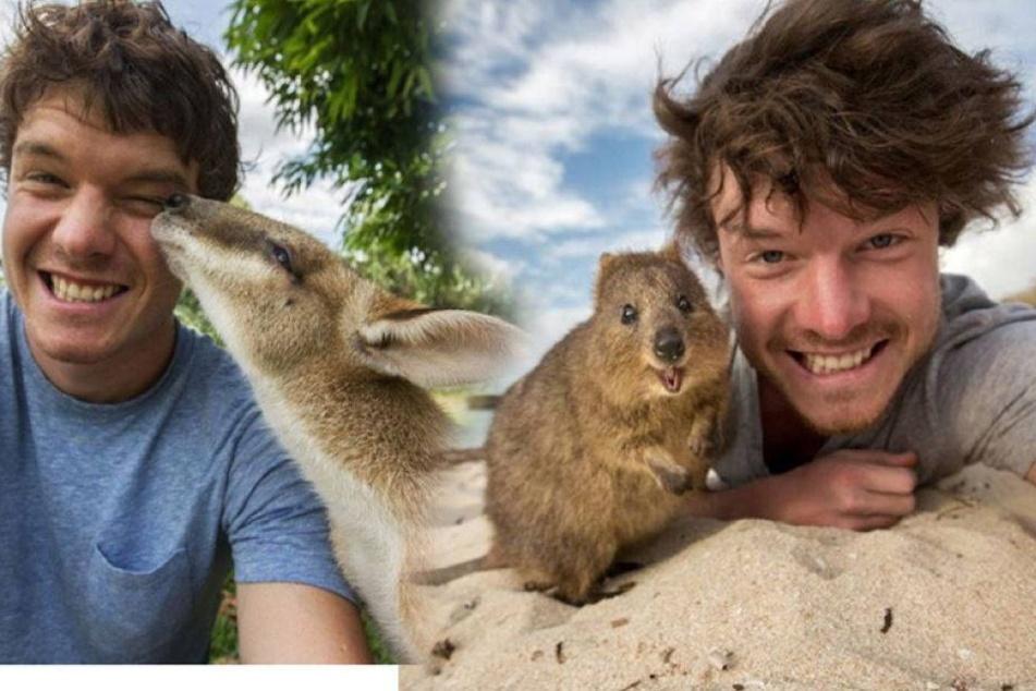 Dieser Typ macht die coolsten Tier-Selfies der Welt