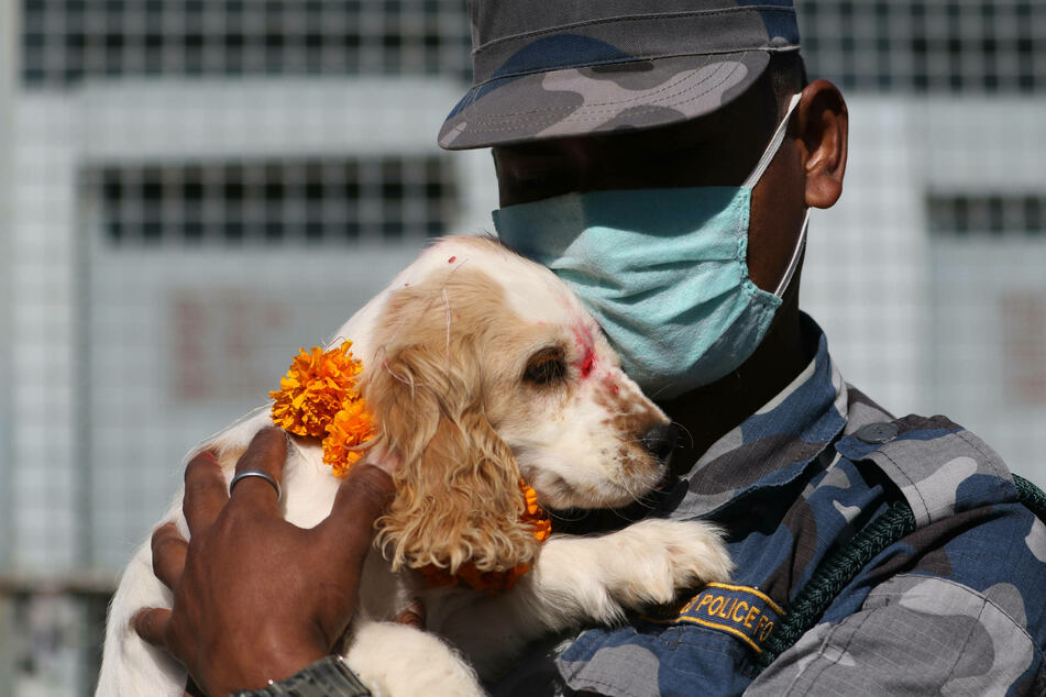 A soldier gives his future sniffer dog a cuddle.