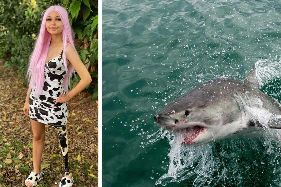 Man punches shark in the face to save his daughter's life