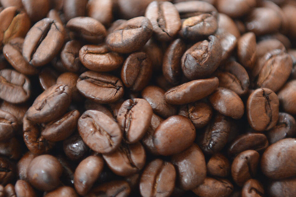 Millionenbetrug mit Röstkaffee: Sechs Männer stehen vor Gericht