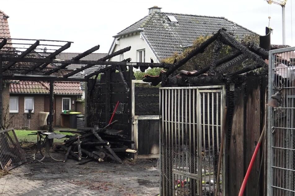 Verheerendes Feuer: Pferd, Hund und zehn Welpen sterben in den Flammen
