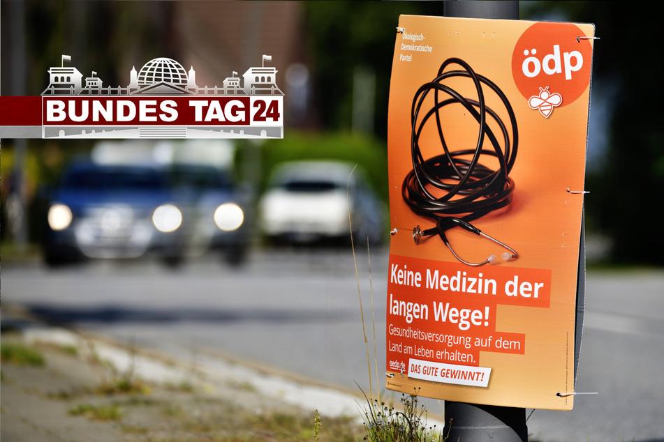 Die ÖDP im TAG24-Interview: Für Klimaschutz, Artenschutz und Familienpolitik!