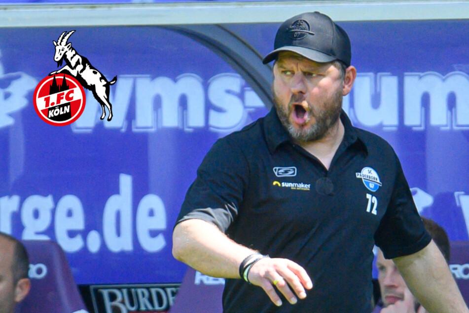 1. FC Köln schnappt sich Wunschtrainer Steffen Baumgart!