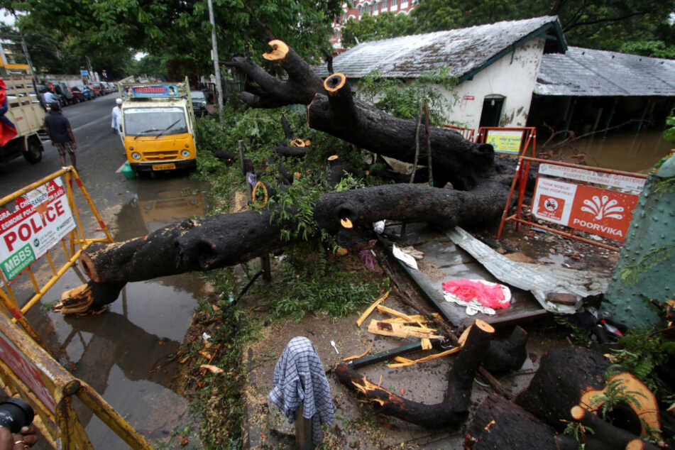 Chennai: Ein Baum, der durch das Unwetter zu Fall gebracht worden ist, liegt auf einer zerstörten Mauer.