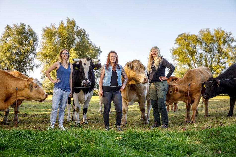 Die Kuh-Retter Sachsens: Conny mit ihren Mitstreiterinnen Linda Walther (26, l.) und Lisa Skadock (32).