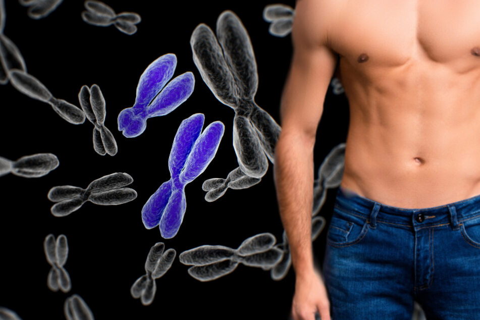 The end of men? Study reveals shrinking Y chromosome
