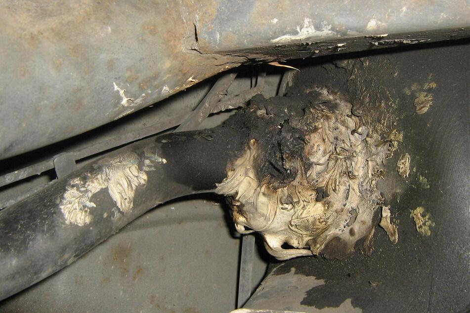 Der Tank des Schrottwagens war undicht und nur provisorisch befestigt. Dennoch hatte der Fahrer (78) den Beamten eine frische TÜV-Plakette gezeigt.