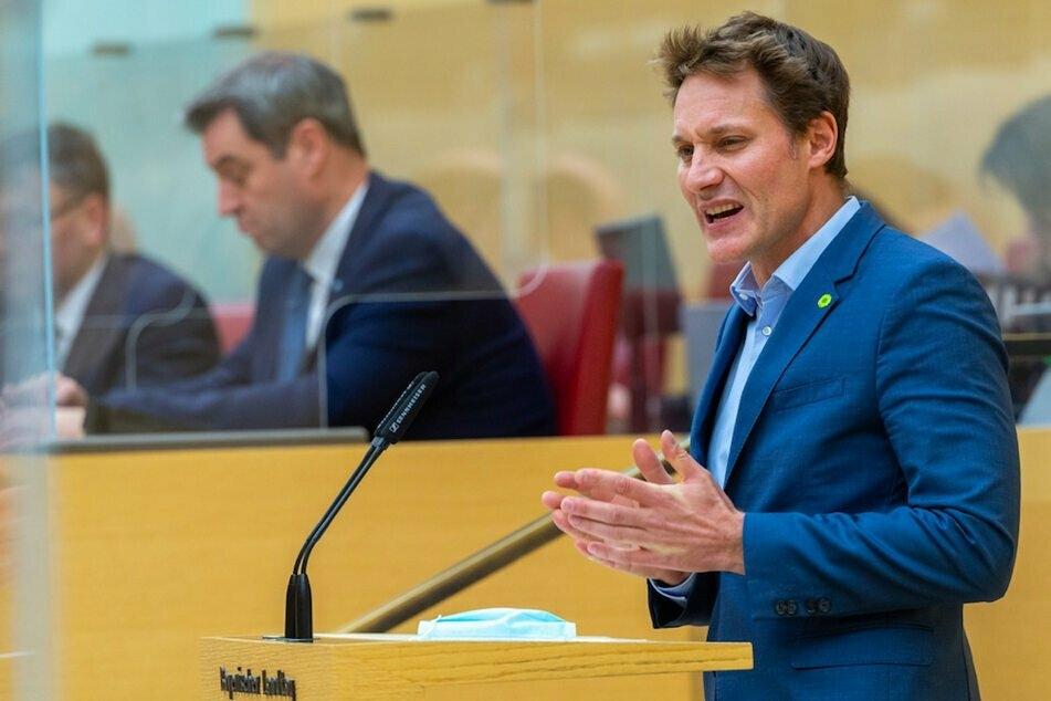 """Grünen-Fraktion attackiert """"selbst ernannten Baumfreund Söder"""" wegen Verkaufs von Waldflächen"""
