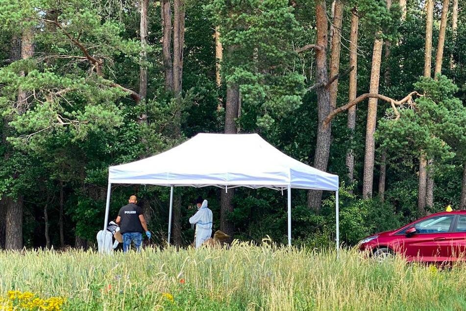 Polizeibeamte sichern unter einem Schutzzelt an der Fundstelle einer Toten Spuren.