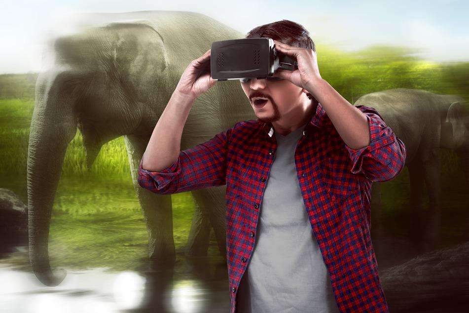 Virtual Reality (VR, auch ohne Brille möglich) ermöglicht das Erleben von Wildtieren, ohne etwa Elefanten vor Ort halten zu müssen.