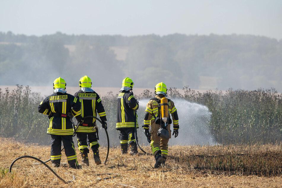 Feuerwehreinsatz: Halber Hektar Feld in Flammen