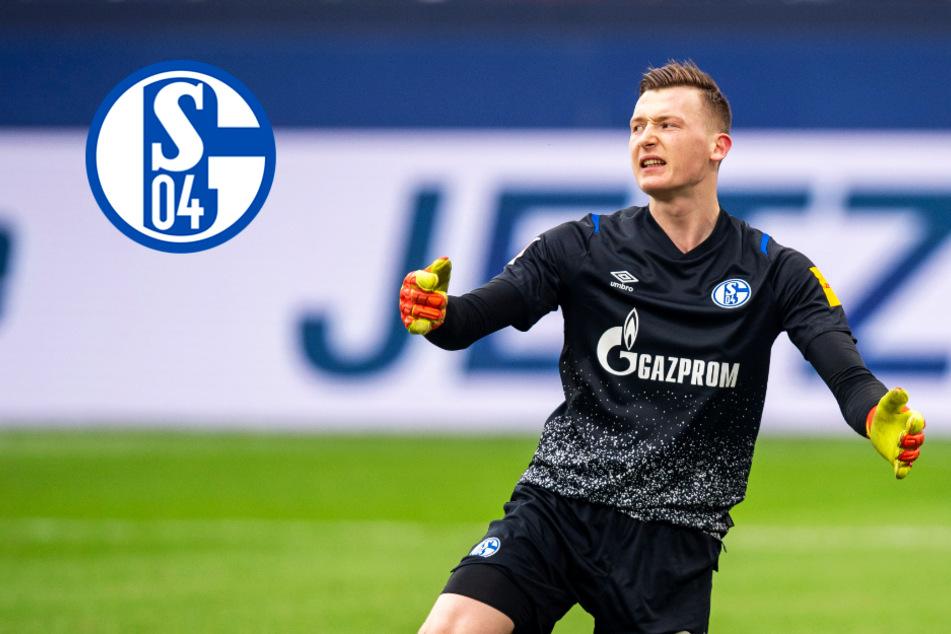 Markus Schubert steht für Schalke gegen den BVB im Tor! Wird er zum Derby-Helden?