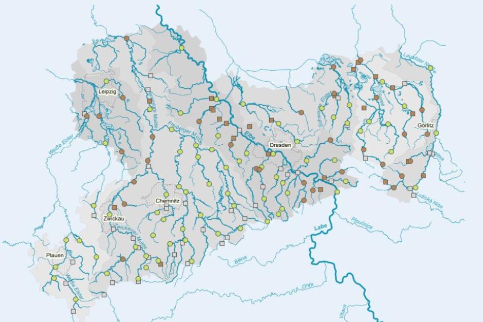 Die Karte zeigt die aktuellen Wasserstände. Ein Großteil der Gewässer führt Niedrigwasser (braune Punkte).