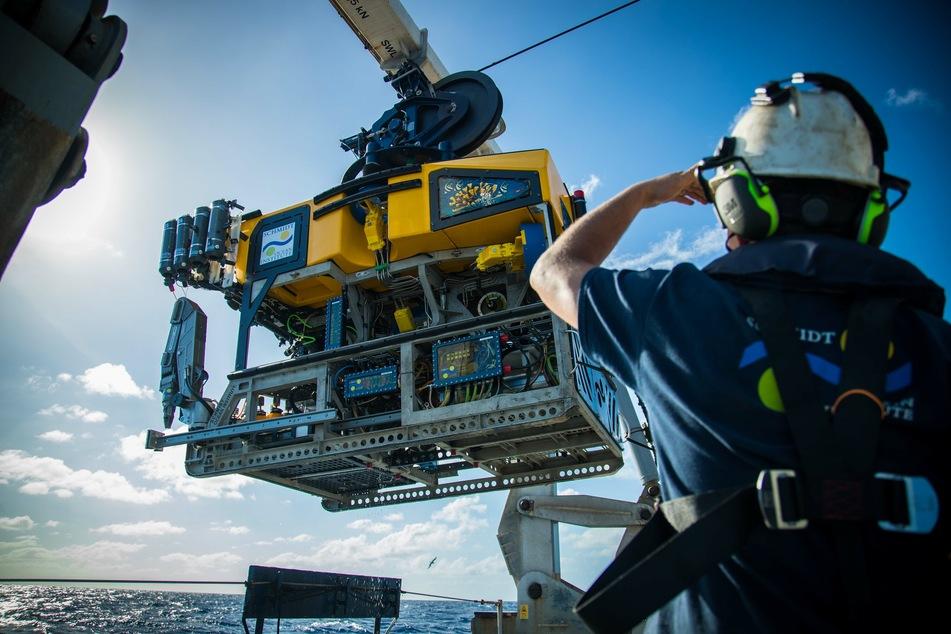 Höher als das Empire State Building: Forscher machen riesige Entdeckung