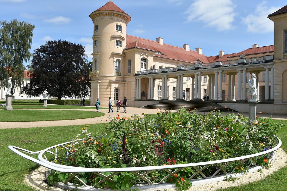 Mit Sommerblumen bepflanzt ist die Rabatte vor dem Schloss in Rheinsberg (Brandenburg).